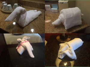 Towel art created by the staff for our enjoyment